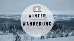 Winter Wanderung Regensburg