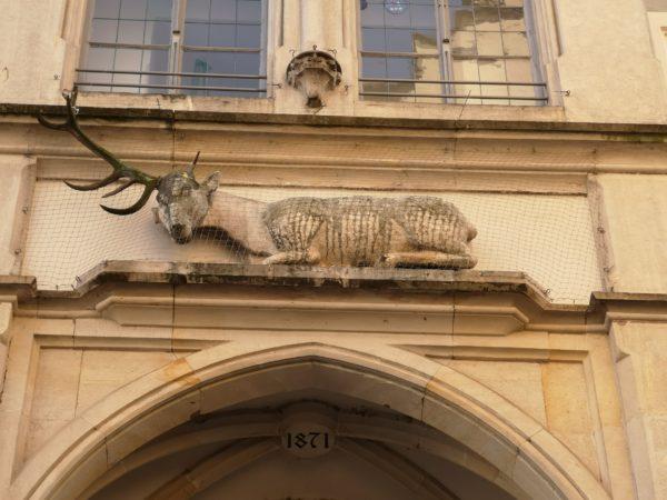 Hirsch Hofbräuhaus Regensburg