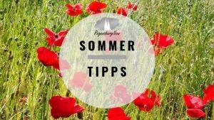 Sommer-Tipps Regensburg