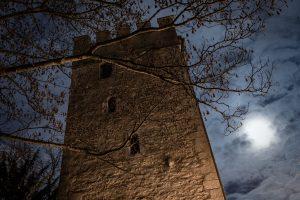 Anatomieturm Regensburg (Foto: Christian Greller)