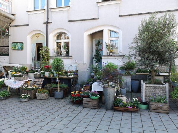 Blumenbühne Regensburg